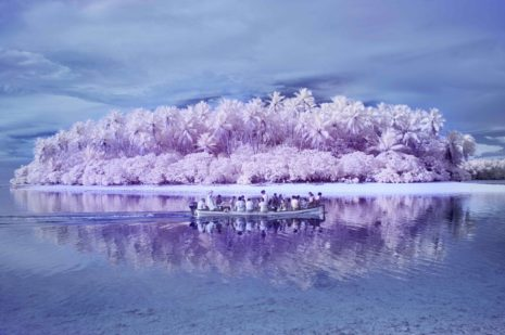 The Island of the Colorblind - pix associates